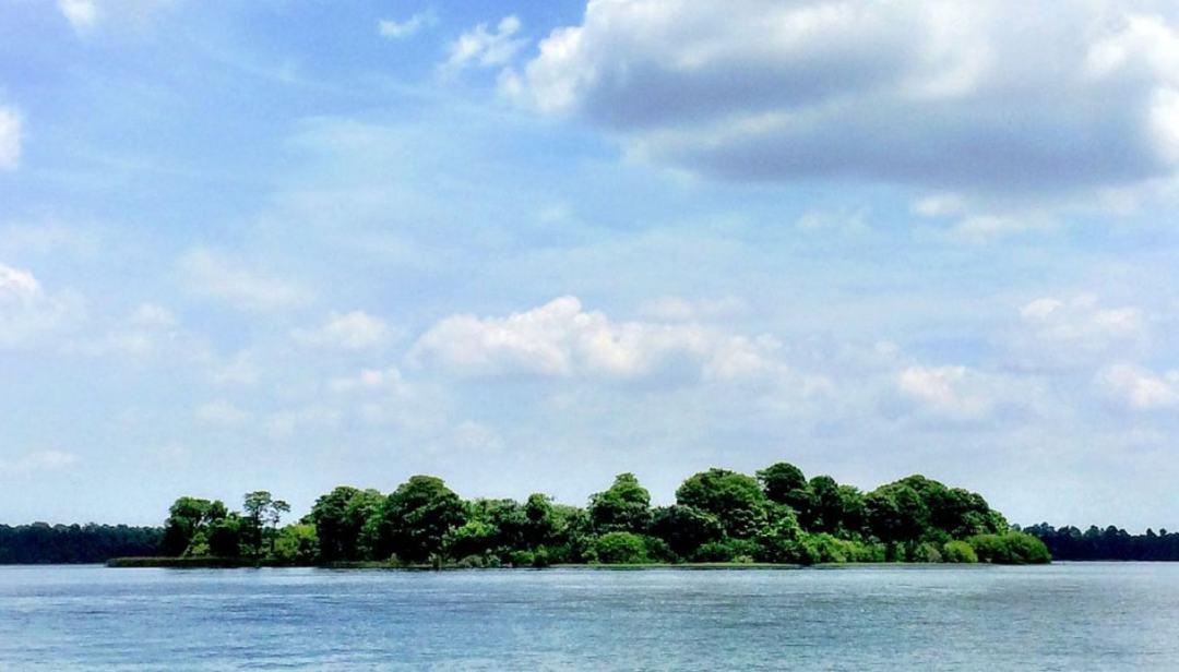 Discovery Island, l\'isola misteriosa abbandonata da Disney World
