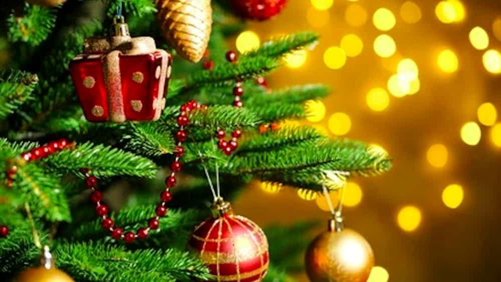 7 alberi di Natale fuori dall'ordinario made in USA